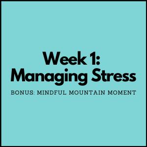 Managing Stress: Bonus