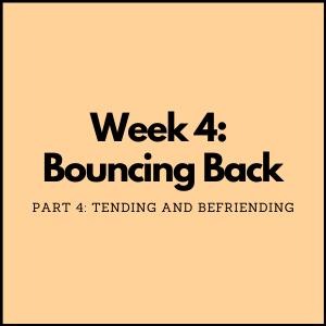Social Emotional Learning   Tending and Befriending