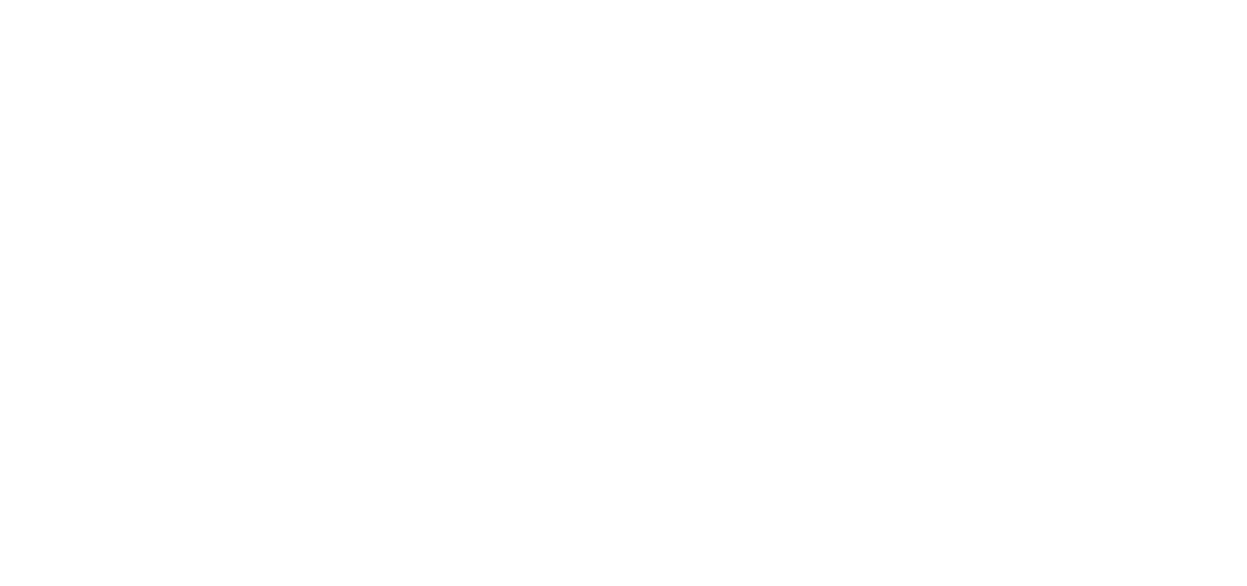 2020 CFEF Logo White